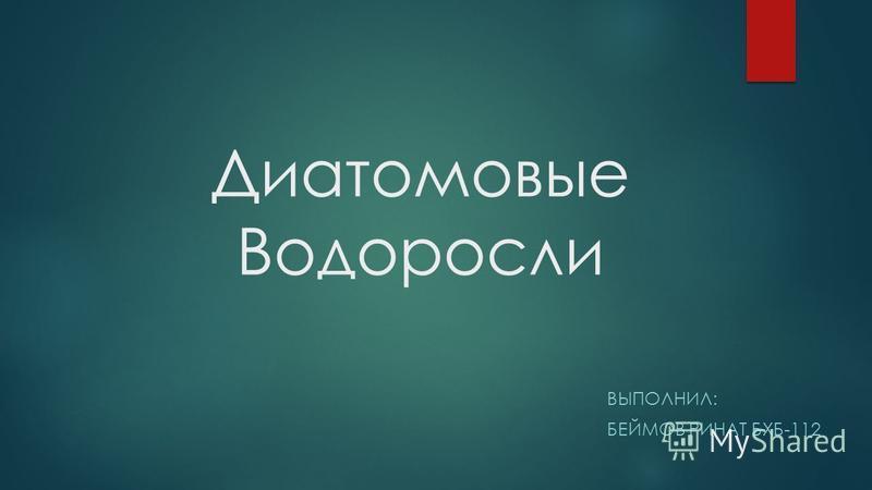 Диатомовые Водоросли ВЫПОЛНИЛ: БЕЙМОВ РИНАТ БХБ-112