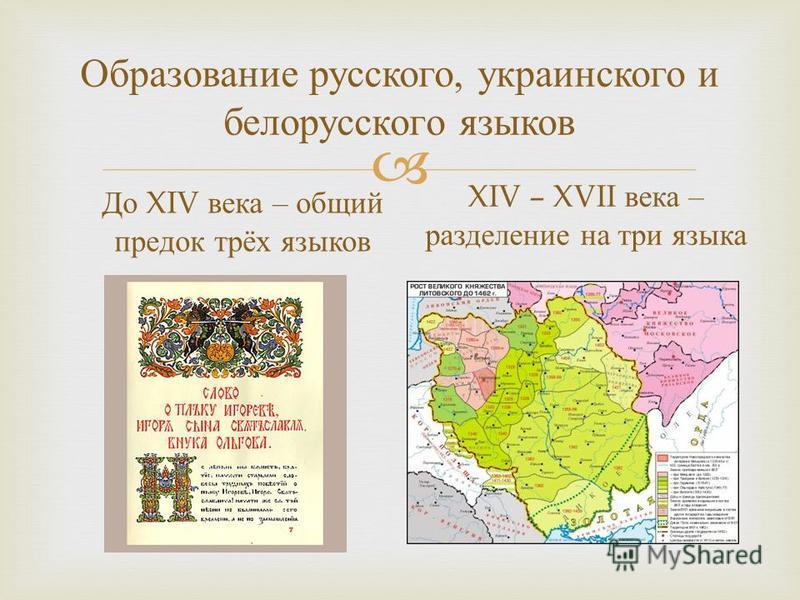 Образование русского, украинского и белорусского языков До XIV века – общий предок трёх языков XIV – XVII века – разделение на три языка