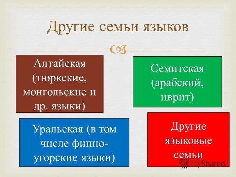 Семитская (арабский, иврит) Уральская (в том числе финно- угорские языки) Алтайская (тюркские, монгольские и др. языки) Другие семьи языков Другие языковые семьи