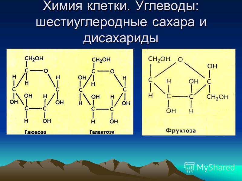 Химия клетки. Углеводы: шести углеродные сахара и дисахариды