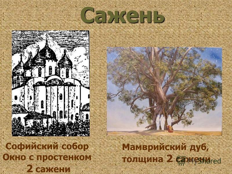 Софийский собор Окно с простенком 2 сажени Сажень Мамврийский дуб, толщина 2 сажени