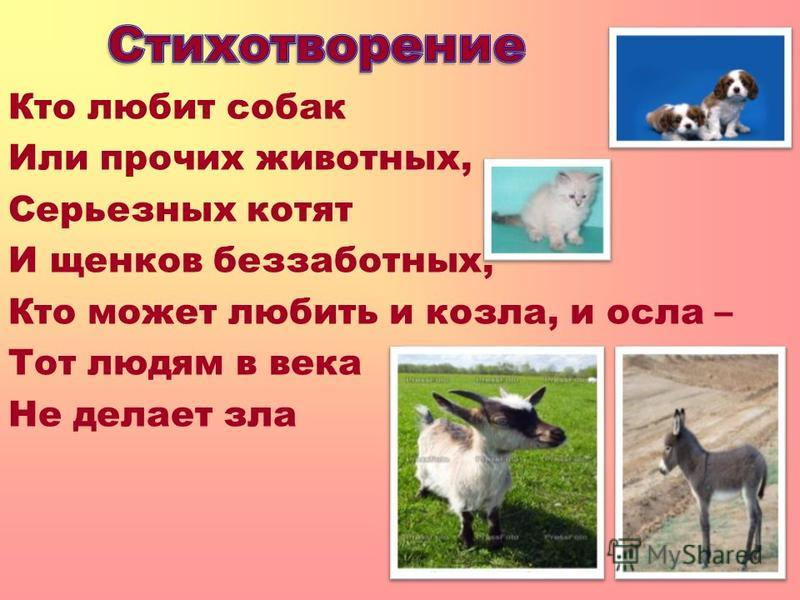 Кто любит собак Или прочих животных, Серьезных котят И щенков беззаботных, Кто может любить и козла, и осла – Тот людям в века Не делает зла