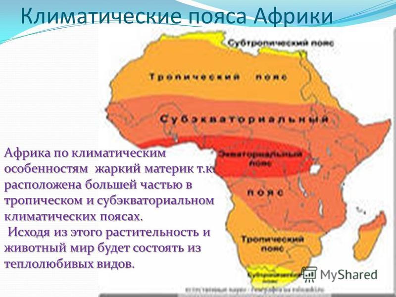 Климатические пояса Африки Африка по климатическим особенностям жаркий материк т.к. расположена большей частью в тропическом и субэкваториальном климатических поясах. Исходя из этого растительность и животный мир будет состоять из теплолюбивых видов.