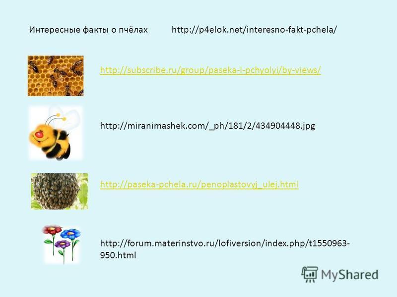 http://forum.materinstvo.ru/lofiversion/index.php/t1550963- 950. html http://paseka-pchela.ru/penoplastovyj_ulej.html http://subscribe.ru/group/paseka-i-pchyolyi/by-views/ Интересные факты о пчёлахhttp://p4elok.net/interesno-fakt-pchela/ http://miran