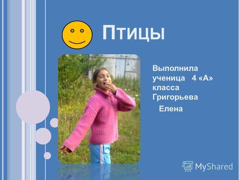 П ТИЦЫ Выполнила ученица 4 «А» класса Григорьева Елена