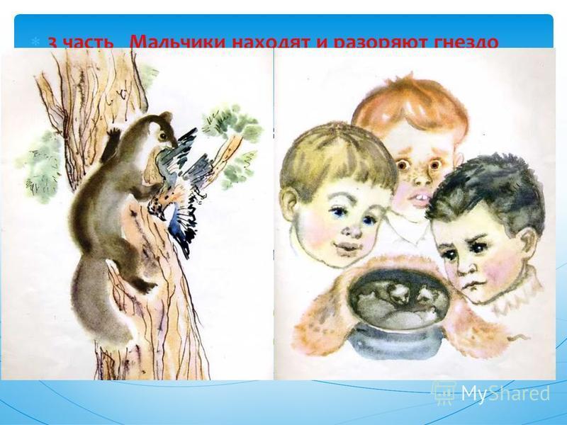 3 часть Мальчики находят и разоряют гнездо Белогрудки. – Какой момент в рассказе можно назвать самым напряженным? (Кража котят) – Где была Белогрудка, когда похитили котят? – Мальчишки умышленно совершили зло? (неумышленно, они их взяли не для того,