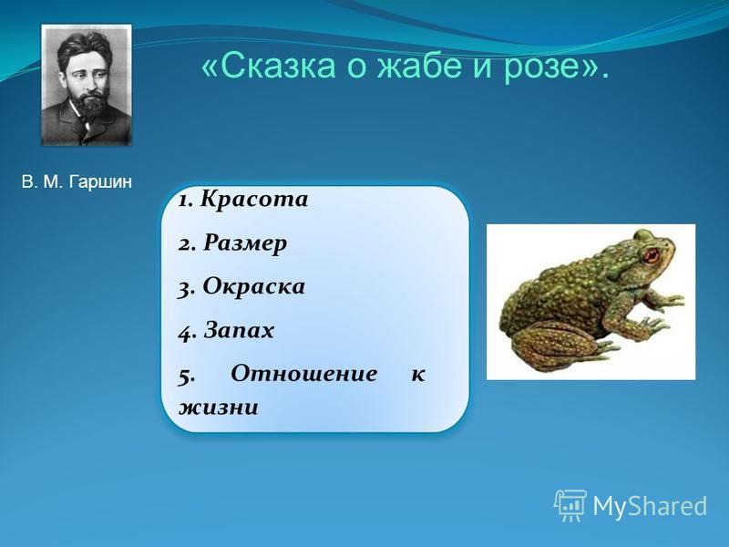 1. Красота 2. Размер 3. Окраска 4. Запах 5. Отношение к жизни «Сказка о жабе и розе». В. М. Гаршин
