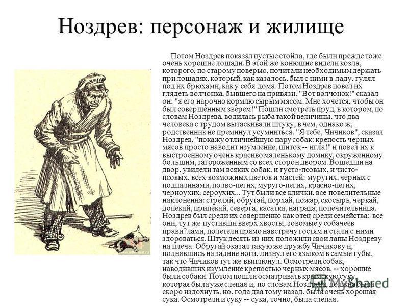 Ноздрев: персонаж и жилище Потом Ноздрев показал пустые стойла, где были прежде тоже очень хорошие лошади. В этой же конюшне видели козла, которого, по старому поверью, почитали необходимым держать при лошадях, который, как казалось, был с ними в лад