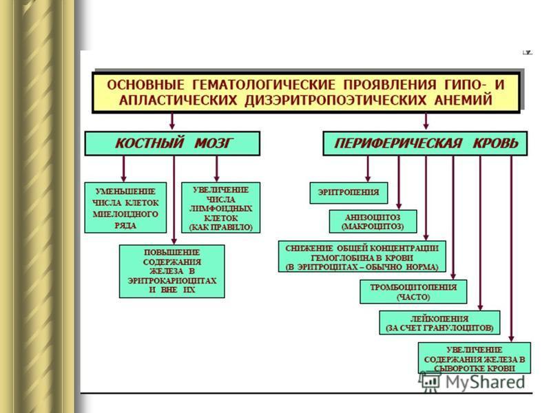 Макроцитоз