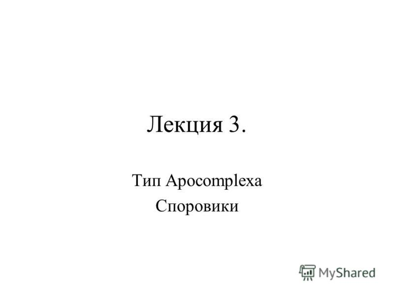 Лекция 3. Тип Apocomplexa Споровики