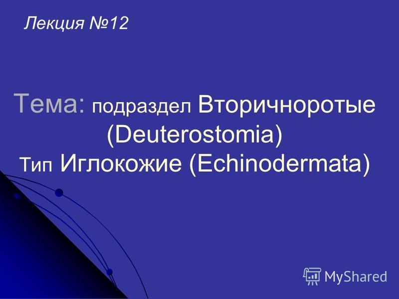 Тема: подраздел Вторичноротые (Deuterostomia) Тип Иглокожие (Echinodermata) Лекция 12