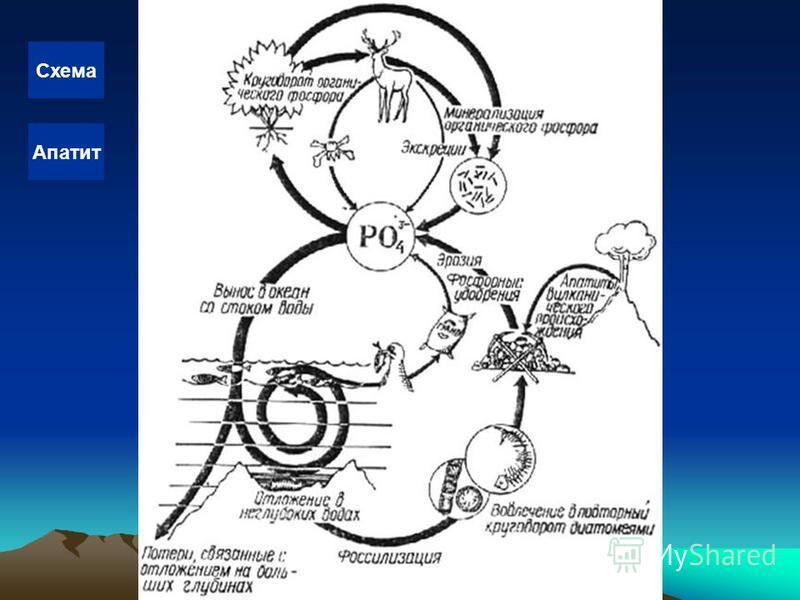 Схема Апатит