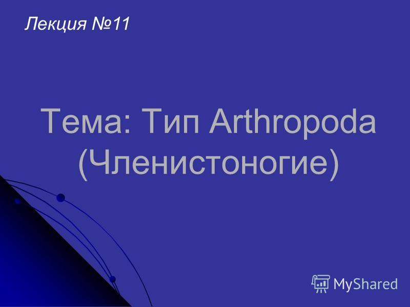 Тема: Тип Arthropoda (Членистоногие) Лекция 11