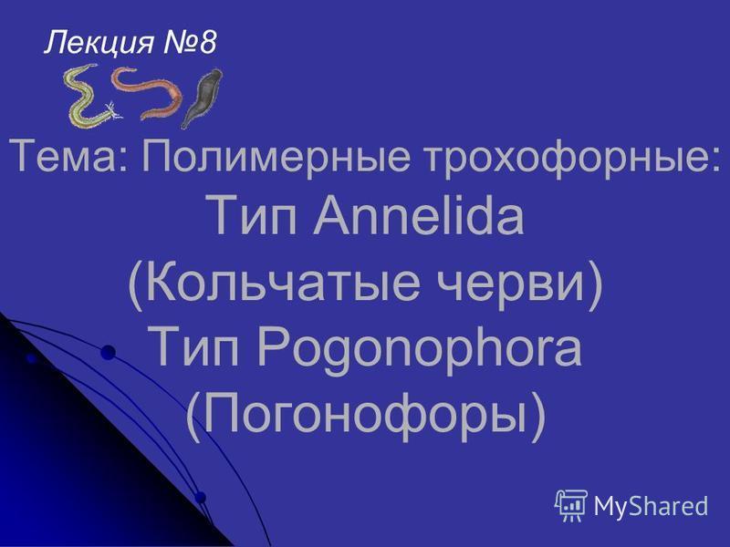 Тема: Полимерные трохофорные: Тип Annelida (Кольчатые черви) Тип Pogonophora (Погонофоры) Лекция 8