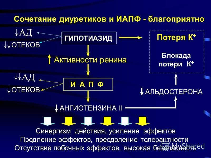 Сочетание диуретиков и ИАПФ - благоприятно ГИПОТИАЗИД АД Потеря К + Активности ренина И А П Ф АД АНГИОТЕНЗИНА II Синергизм действия, усиление эффектов Продление эффектов, преодоление толерантности Отсутствие побочных эффектов, высокая безопасность Бл
