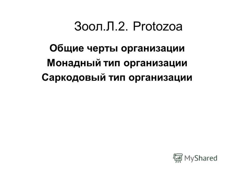 Зоол.Л.2. Protozoa Общие черты организации Монадный тип организации Cаркодовый тип организации