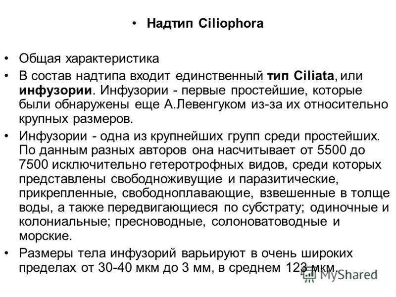 Надтип Ciliophora Общая характеристика В состав надтипа входит единственный тип Ciliata, или инфузории. Инфузории - первые простейшие, которые были обнаружены еще А.Левенгуком из-за их относительно крупных размеров. Инфузории - одна из крупнейших гру