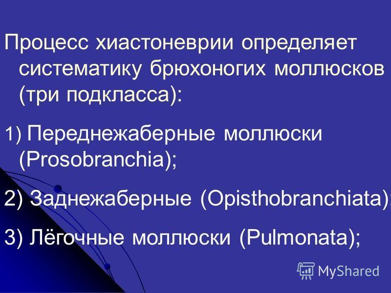 Процесс хиастоневрии определяет систематику брюхоногих моллюсков (три подкласса): 1) Переднежаберные моллюски (Prosobranchia); 2) Заднежаберные (Opisthobranchiata); 3) Лёгочные моллюски (Pulmonata);