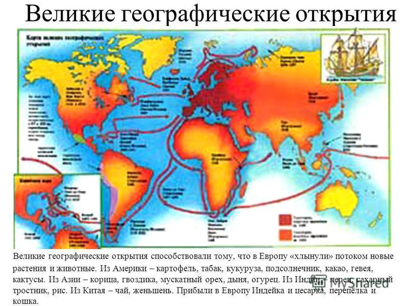 Великие географические открытия Великие географические открытия способствовали тому, что в Европу «хлынули» потоком новые растения и животные. Из Америки – картофель, табак, кукуруза, подсолнечник, какао, гевея, кактусы. Из Азии – корица, гвоздика, м