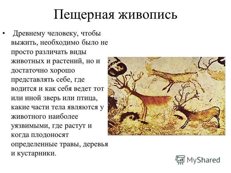 Пещерная живопись Древнему человеку, чтобы выжить, необходимо было не просто различать виды животных и растений, но и достаточно хорошо представлять себе, где водится и как себя ведет тот или иной зверь или птица, какие части тела являются у животног