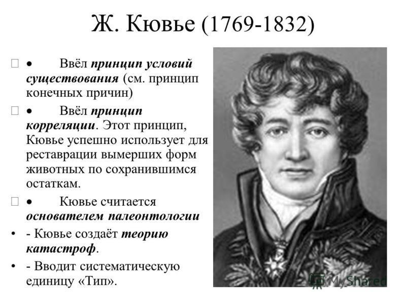 Ж. Кювье (1769-1832) Ввёл принцип условий существования (см. принцип конечных причин) Ввёл принцип корреляции. Этот принцип, Кювье успешно использует для реставрации вымерших форм животных по сохранившимся остаткам. Кювье считается основателем палеон