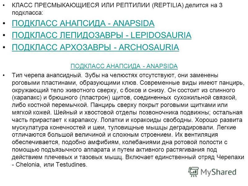 КЛАСС ПРЕСМЫКАЮЩИЕСЯ ИЛИ РЕПТИЛИИ (REPTILIA) делится на 3 подкласса: ПОДКЛАСС АНАПСИДА - ANAPSIDA ПОДКЛАСС ЛЕПИДОЗАВРЫ - LEPIDOSAURIA ПОДКЛАСС АРХОЗАВРЫ - ARCHOSAURIA ПОДКЛАСС АНАПСИДА - ANAPSIDA Тип черепа анапсидный. Зубы на челюстях отсутствуют, о