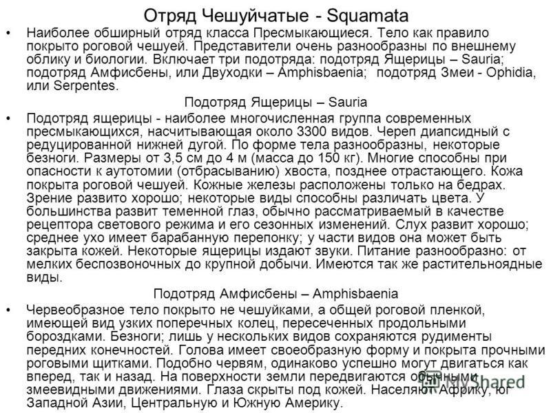 Отряд Чешуйчатые - Squamata Наиболее обширный отряд класса Пресмыкающиеся. Тело как правило покрыто роговой чешуей. Представители очень разнообразны по внешнему облику и биологии. Включает три подотряда: подотряд Ящерицы – Sauria; подотряд Амфисбены,