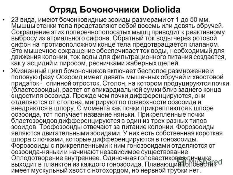 Отряд Бочоночники Doliolida 23 вида, имеют бочонковидные зооиды размерами от 1 до 50 мм. Мышцы стенки тела представляют собой восемь или девять обручей. Сокращение этих поперечнополосатых мышц приводит к реактивному выбросу из атриального сифона. Обр