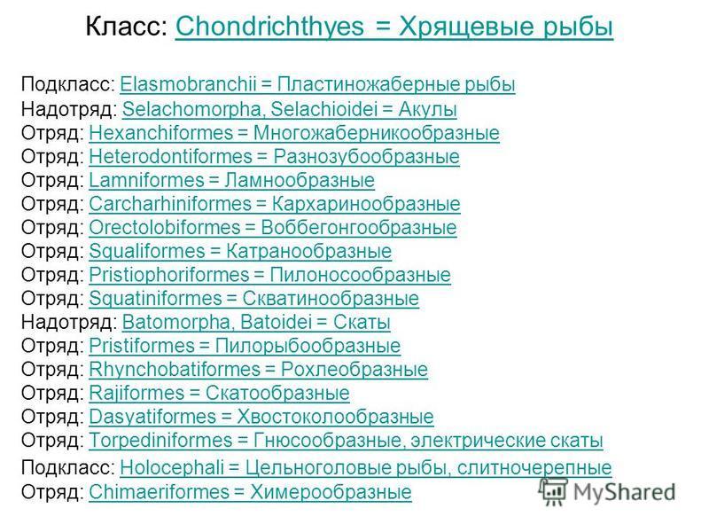 Класс: Chondrichthyes = Хрящевые рыбыChondrichthyes = Хрящевые рыбы Подкласс: Elasmobranchii = Пластиножаберные рыбы Elasmobranchii = Пластиножаберные рыбы Надотряд: Selachomorpha, Selachioidei = АкулыSelachomorpha, Selachioidei = Акулы Отряд: Hexanc