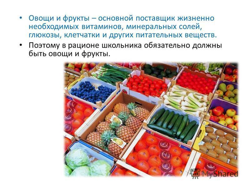 Овощи и фрукты – основной поставщик жизненно необходимых витаминов, минеральных солей, глюкозы, клетчатки и других питательных веществ. Поэтому в рационе школьника обязательно должны быть овощи и фрукты.
