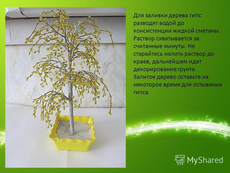 Для заливки дерева гипс разводят водой до консистенции жидкой сметаны. Раствор схватывается за считанные минуты. Не старайтесь налить раствор до краев, дальнейшем идет декорирование грунта. Залитое дерево оставьте на некоторое время для остывания гип