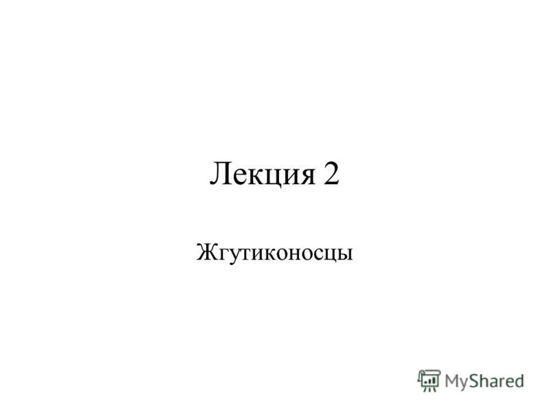 Лекция 2 Жгутиконосцы
