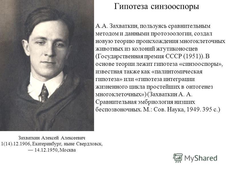 Гипотеза синзооспоры А.А. Захваткин, пользуясь сравнительным методом и данными протозоологии, создал новую теорию происхождения многоклеточных животных из колоний жгутиконосцев (Государственная премия СССР (1951)). В основе теории лежит гипотеза «син