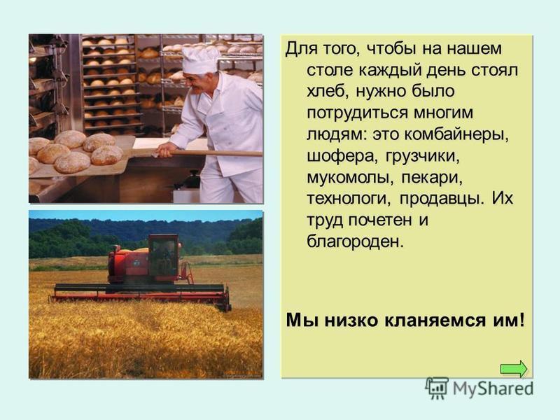 Для того, чтобы на нашем столе каждый день стоял хлеб, нужно было потрудиться многим людям: это комбайнеры, шофера, грузчики, мукомолы, пекари, технологи, продавцы. Их труд почетен и благороден. Мы низко кланяемся им! Для того, чтобы на нашем столе к