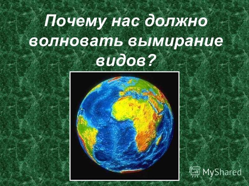 Почему нас должно волновать вымирание видов?