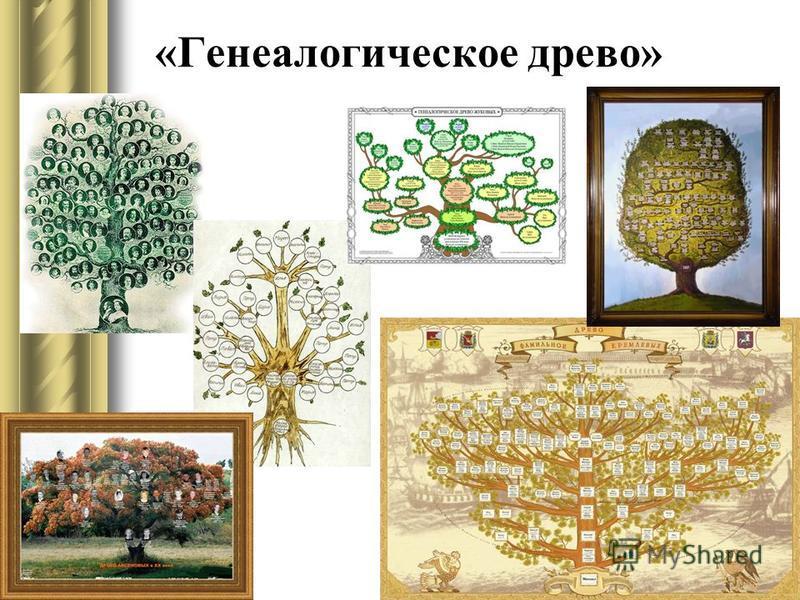 «Генеалогическое древо»