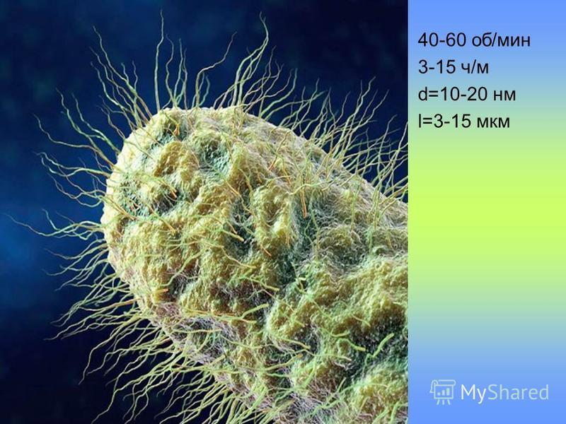 40-60 об/мин 3-15 ч/м d=10-20 нм l=3-15 мкм