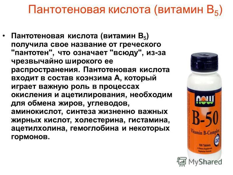 Пантотеновая кислота (витамин В 5 ) Пантотеновая кислота (витамин В 5 ) получила свое название от греческого