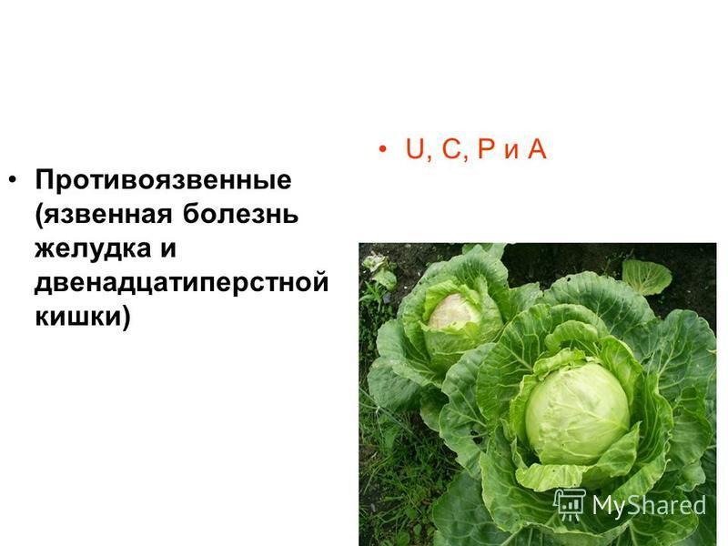 Противоязвенные (язвенная болезнь желудка и двенадцатиперстной кишки) U, С, Р и А