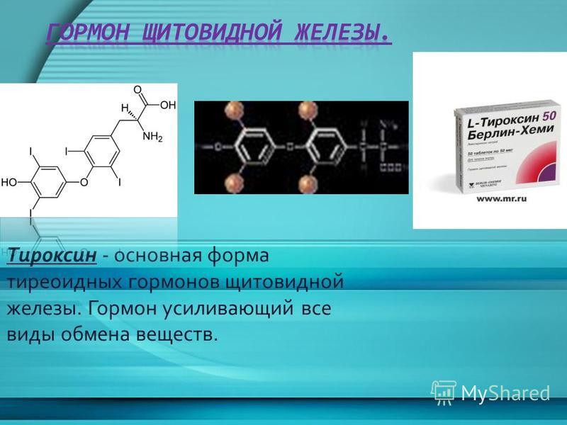 Тироксин - основная форма тиреоидных гормонов щитовидной железы. Гормон усиливающий все виды обмена веществ.