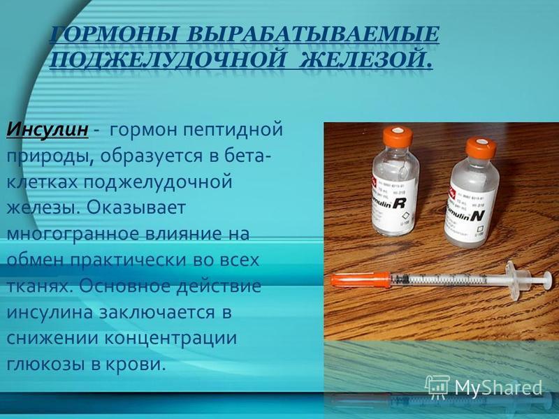 Инсулин - гормон пептидной природы, образуется в бета- клетках поджелудочной железы. Оказывает многогранное влияние на обмен практически во всех тканях. Основное действие инсулина заключается в снижении концентрации глюкозы в крови.
