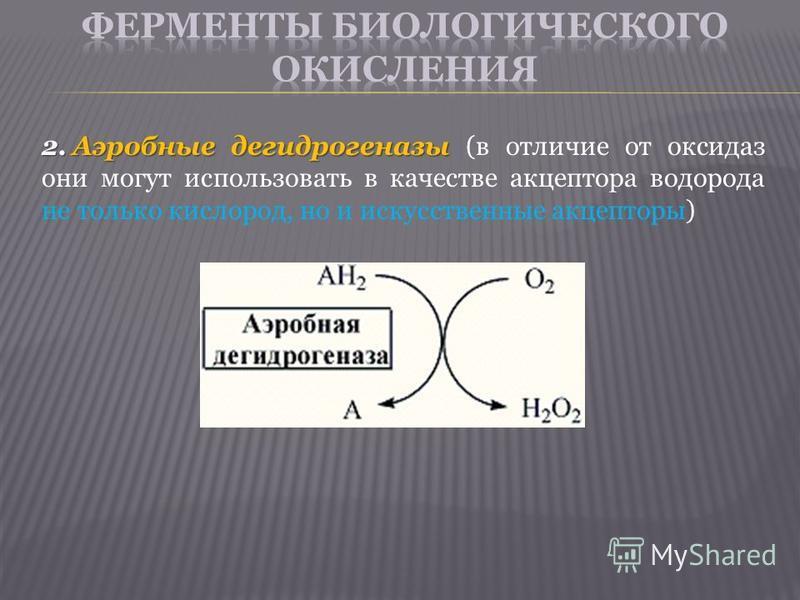 2. Аэробные дегидрогеназы 2. Аэробные дегидрогеназы (в отличие от оксидаз они могут использовать в качестве акцептора водорода не только кислород, но и искусственные акцепторы)