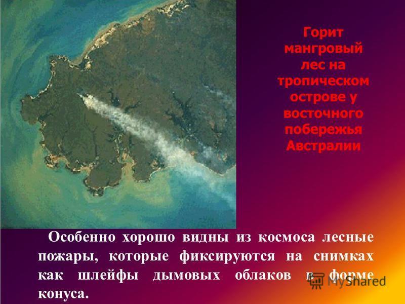 Особенно хорошо видны из космоса лесные пожары, которые фиксируются на снимках как шлейфы дымовых облаков в форме конуса. Горит мангровый лес на тропическом острове у восточного побережья Австралии