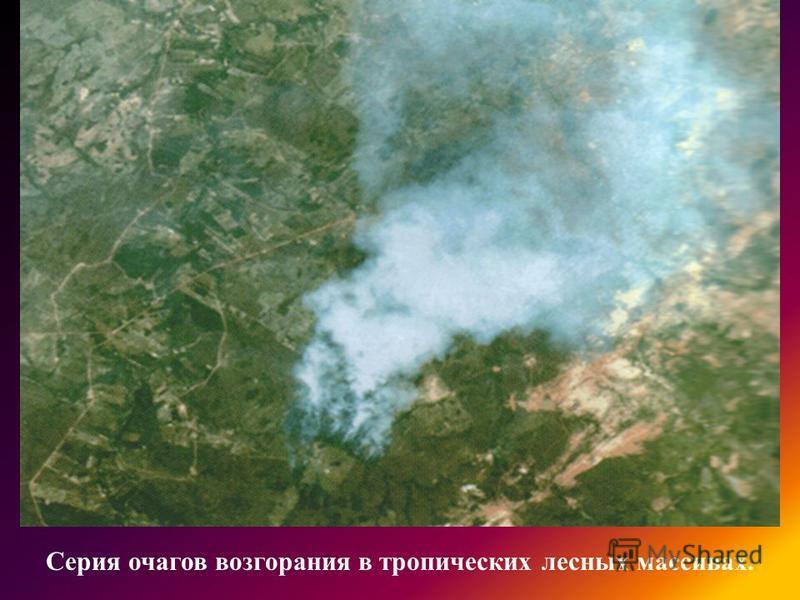 Серия очагов возгорания в тропических лесных массивах.