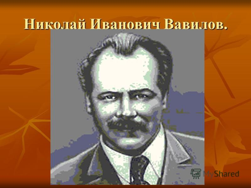 Николай Иванович Вавилов.