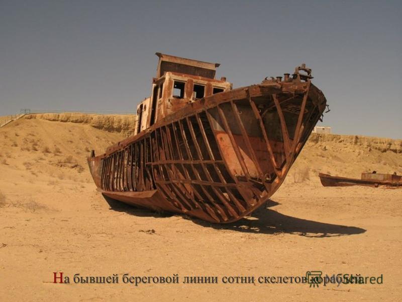 Н а бывшей береговой линии сотни скелетов кораблей.