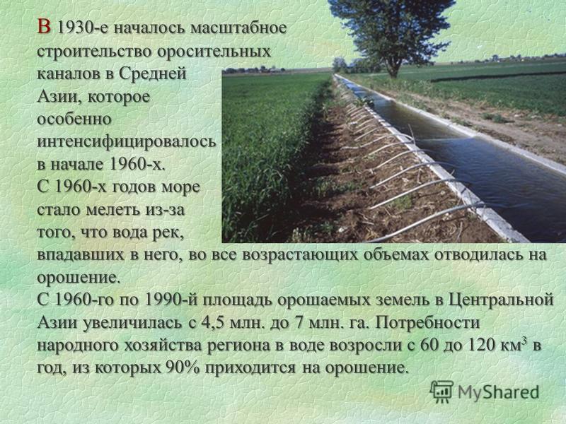 В 1930-е началось масштабное строительство оросительных каналов в Средней Азии, которое особенноинтенсифицировалось в начале 1960-х. С 1960-х годов море стало мелеть из-за того, что вода рек, впадавших в него, во все возрастающих объемах отводилась н