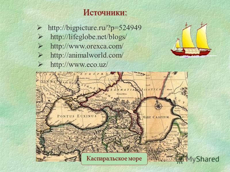 Источники: http://bigpicture.ru/?p=524949 http://lifeglobe.net/blogs/ http://www.orexca.com/ http://animalworld.com/ http://www.eco.uz/ Каспаральское море