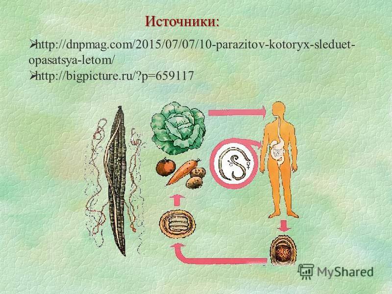 http://dnpmag.com/2015/07/07/10-parazitov-kotoryx-sleduet- opasatsya-letom/ http://bigpicture.ru/?p=659117 Источники: