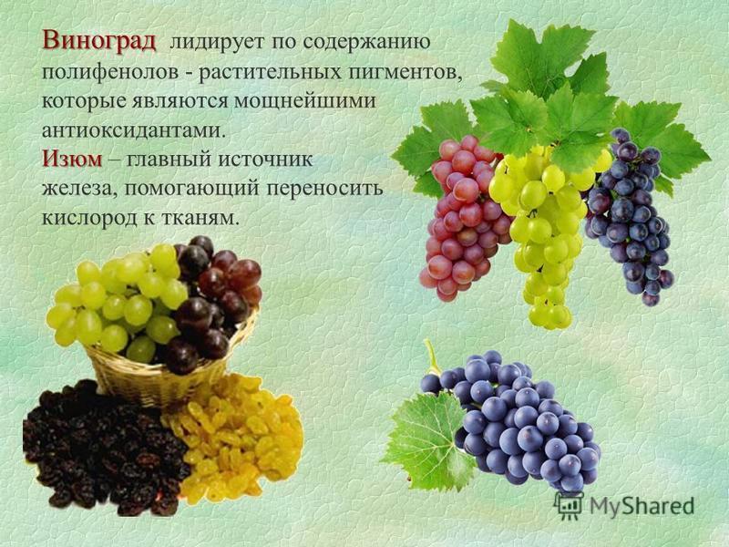 Виноград Виноград лидирует по содержанию полифенолов - растительных пигментов, которые являются мощнейшими антиоксидантами. Изюм Изюм – главный источник железа, помогающий переносить кислород к тканям.